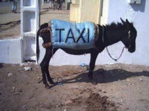 Все о такси - фото дня 23 апреля